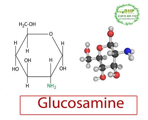 Glucosamine là gì? Review glucosamine Mỹ tốt nhất hiện nay